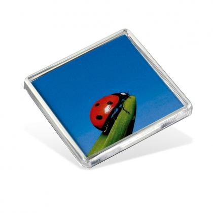 ADV Square Fridge Magnet - 58 mm x 58 mm (box-500)