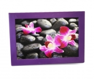 "Solo Mount Magnet 4 x 6""- Purple- inc. clear high-gloss cover"