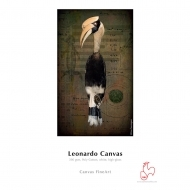 "Leonardo Canvas - Roll 17"" x 12 m"
