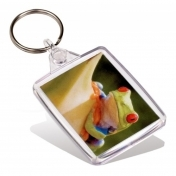 Adventa Passport Keyring Clear (insert 35 x 45 mm)