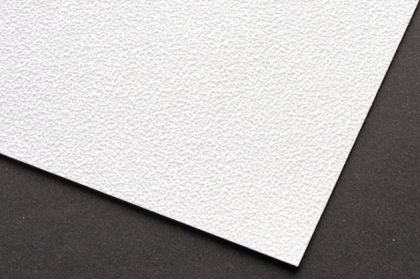 Digifort - P300 - 13009 Stucco