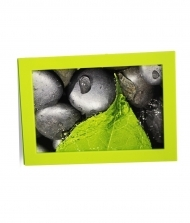 "Solo Mount Magnet 4 x 6""- green- inc. clear high-gloss cover"